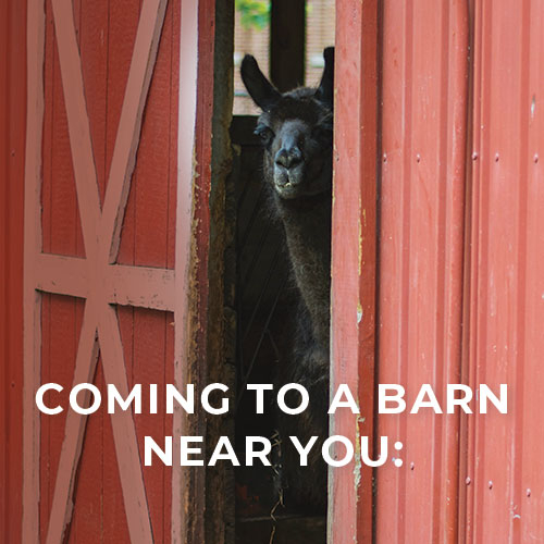 coming-to-a-barn-near-you